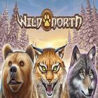 Wild North Slot Next Casino