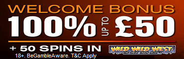 Wild Slots Welcome Bonus UK